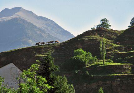 Naturaleza en el valle de benasque - Hotel casa chuldian ...